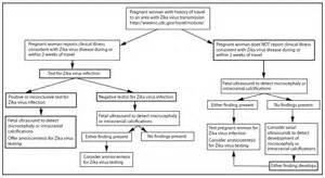 treatment para sa dengue picture 10