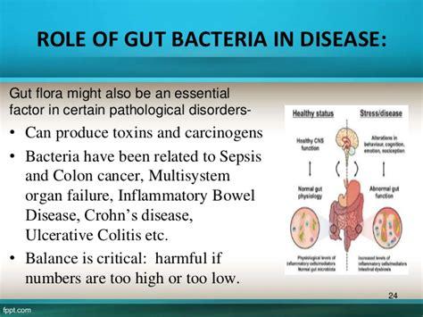 cfs is a th1 immune disease bacterial in origin picture 7