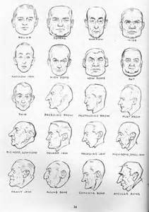 different styles of penis heads picture 6