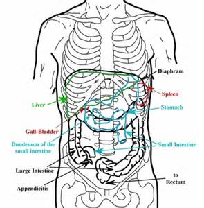 back pain & liver cleanse picture 3