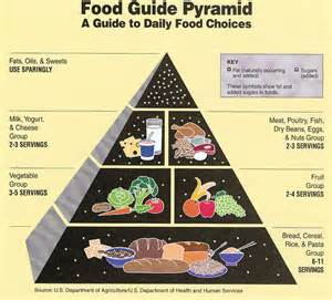 7 essential nutrients needed as part of a 2000 calorie diet picture 2