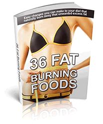 aol fat burning diets picture 3