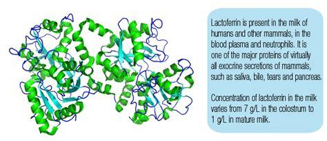 acne care lactoferrin benefits picture 7