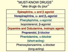 adrenergic drugs quiz nclez picture 6