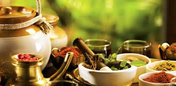 about ayurvedic chilgonzo and its uses picture 10