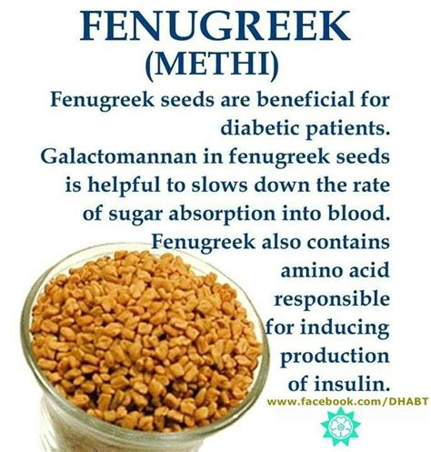 what is fenugreek used for in women picture 2