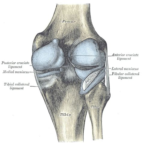 joint pain sugar picture 1