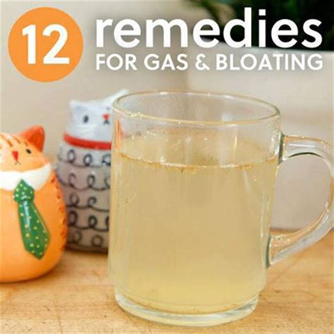 herbal remedies for gas and bloating picture 6