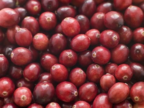 cranberries and bladder infections picture 14