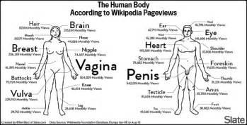 vagina penis arabian picture 7