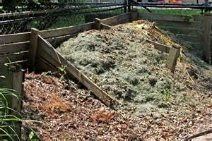 compost piles picture 2