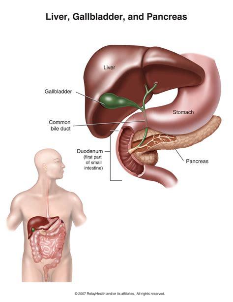 gal bladder or heart burn picture 11