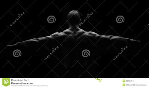 creative interior back muscle picture 9