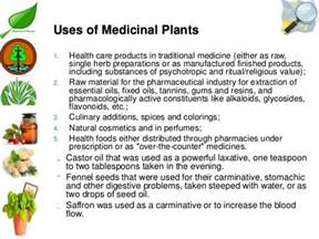 herbal leaves for high blood picture 11