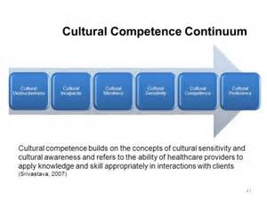 cultural competence continuum and aging picture 14