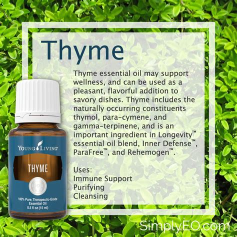 essential oil of tyyme for cysts picture 10