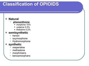 natural opioids drugs picture 2