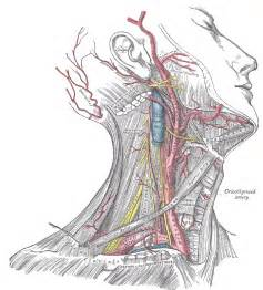 thyroid and choking picture 11