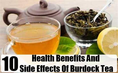 health benefits of burdock root tea picture 3