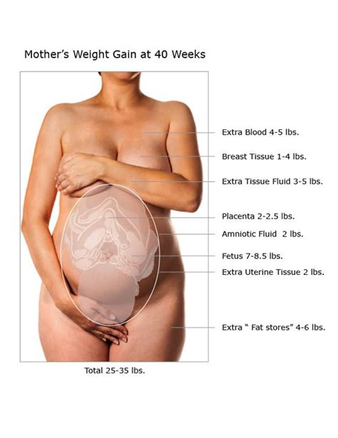 quick water weight gain during pregnancy picture 13