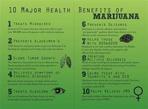 health benefits of dollar weeds picture 3