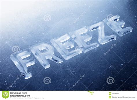 freeze picture 17