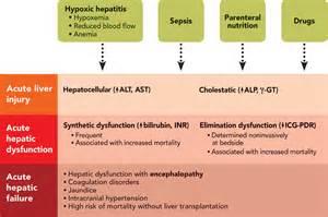 accute liver failure picture 2