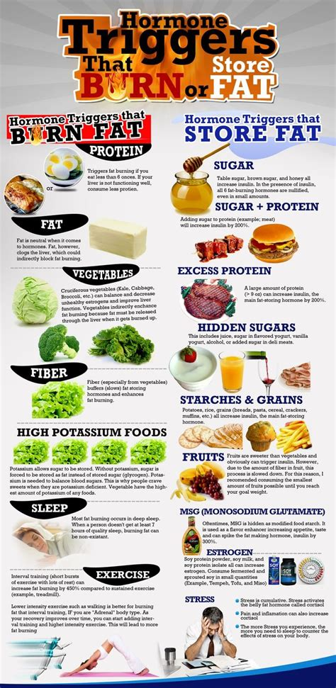 fat burning hormones diet picture 10