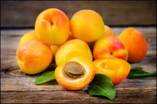 apricots health picture 15