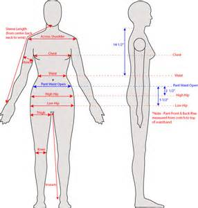 what is the length of a female human picture 5