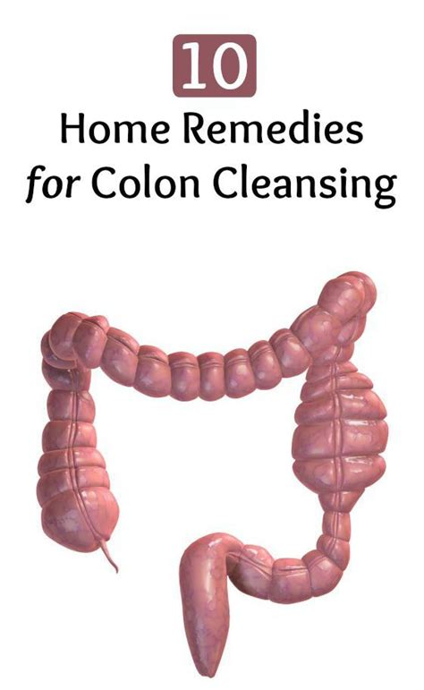 echinacea helps colon cleansing picture 6