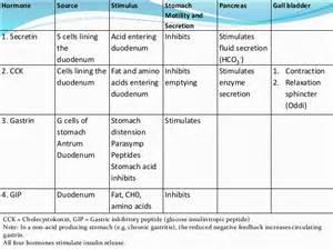 gastrointestinal hormones picture 3