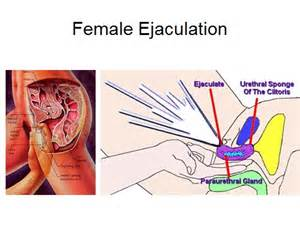 doctor helps with female ejaculation picture 6