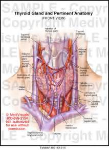 thyroid gland removeal picture 9
