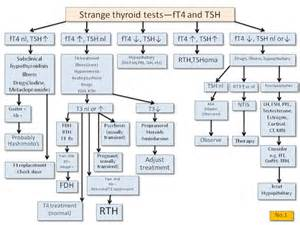thyroid basal test picture 6