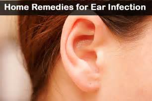 home remedies for babies with ear infection picture 10