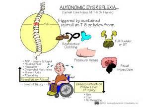 areflexic neurogenic bowel picture 6