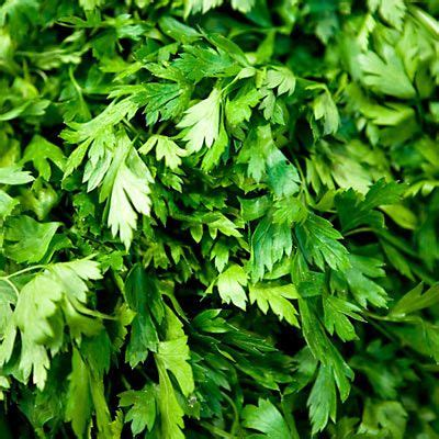 what herb to take on venus diet picture 9