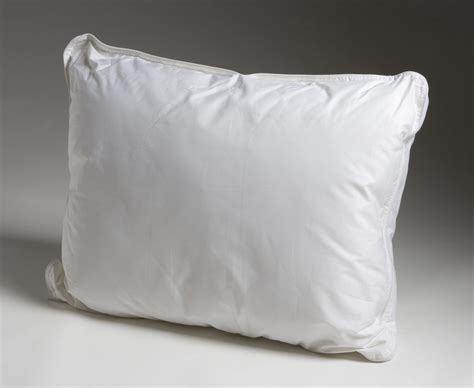 pillow picture 1