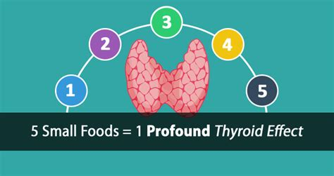 can armour thyroid be taken with food picture 2