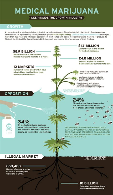 herbal business trends picture 6