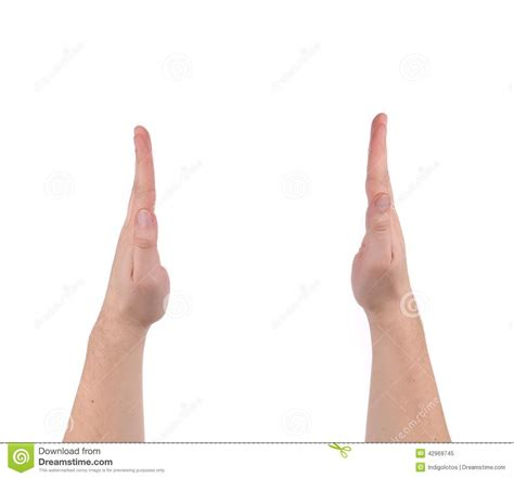 average penis size for white males picture 10