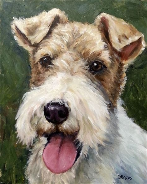 wire hair fox terriers web 9818 picture 2