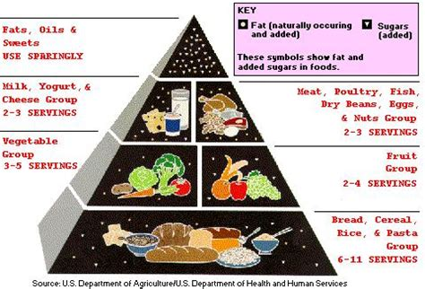 Fat and cholesterol restricted diet picture 19