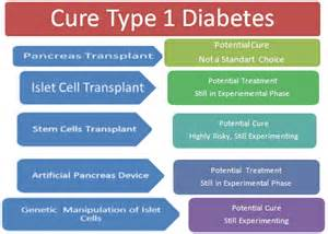 cure type 1 diabetes picture 2