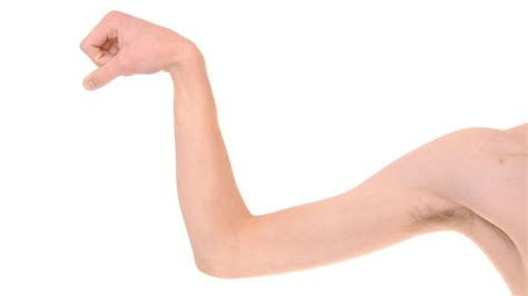 clip art pictures of muscle men is picture 2