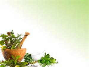 about ayurvedic chilgonzo and its uses picture 7