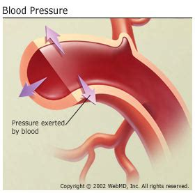 What causes your blood pressure to go low picture 4
