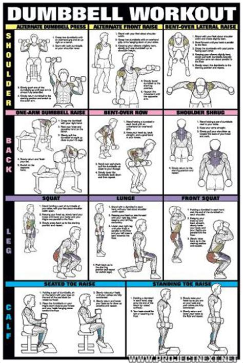 dumbbell workout burn fat picture 13
