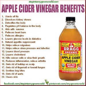 cider vinegar weight loss benefits picture 1
